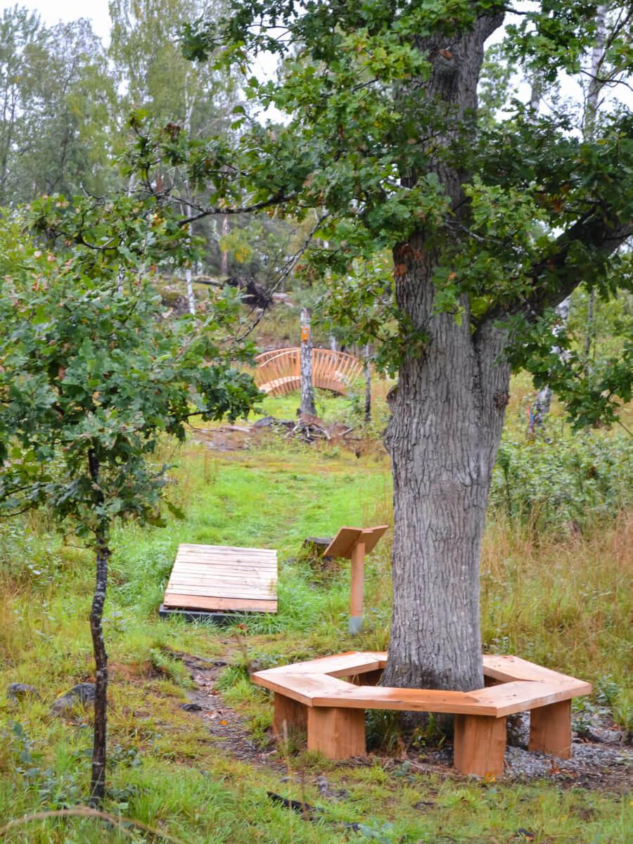 jacksons-trädvård-utemiljö