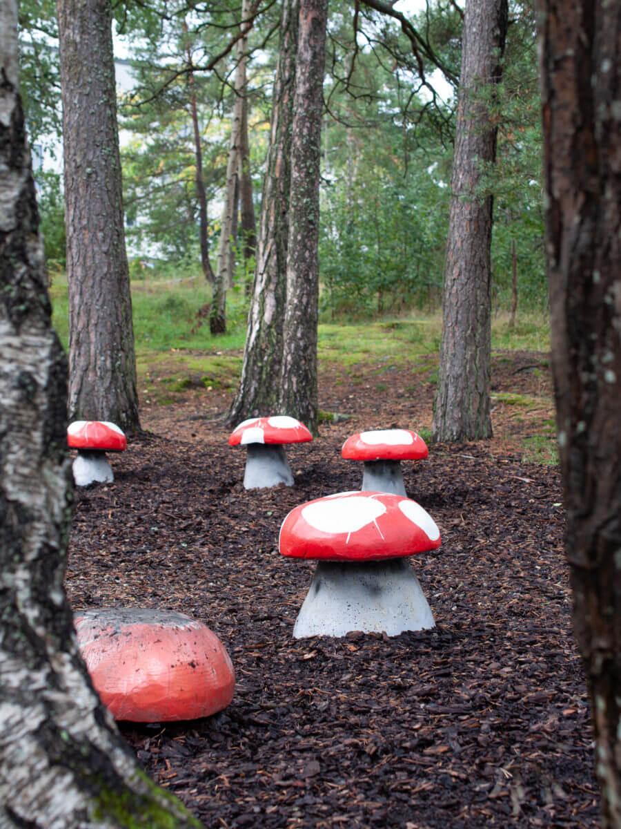 jacksons-trädvård-svampar