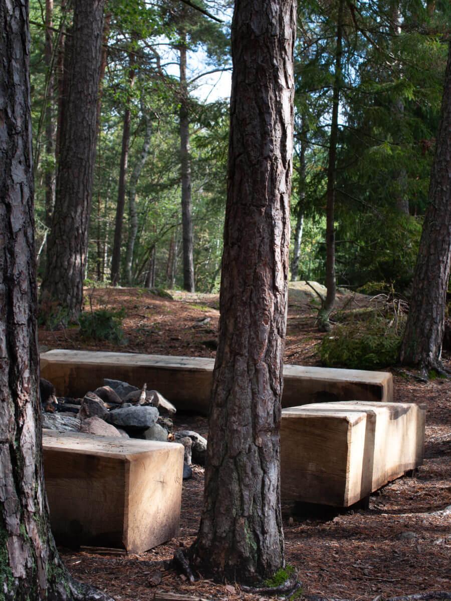jacksons-trädvård-lägereld