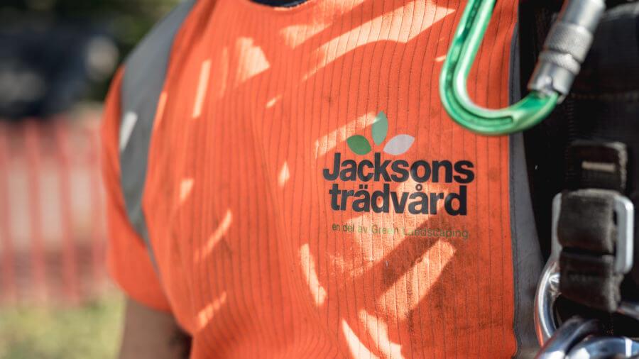 jacksons-trädvård-En del av Green Landscaping