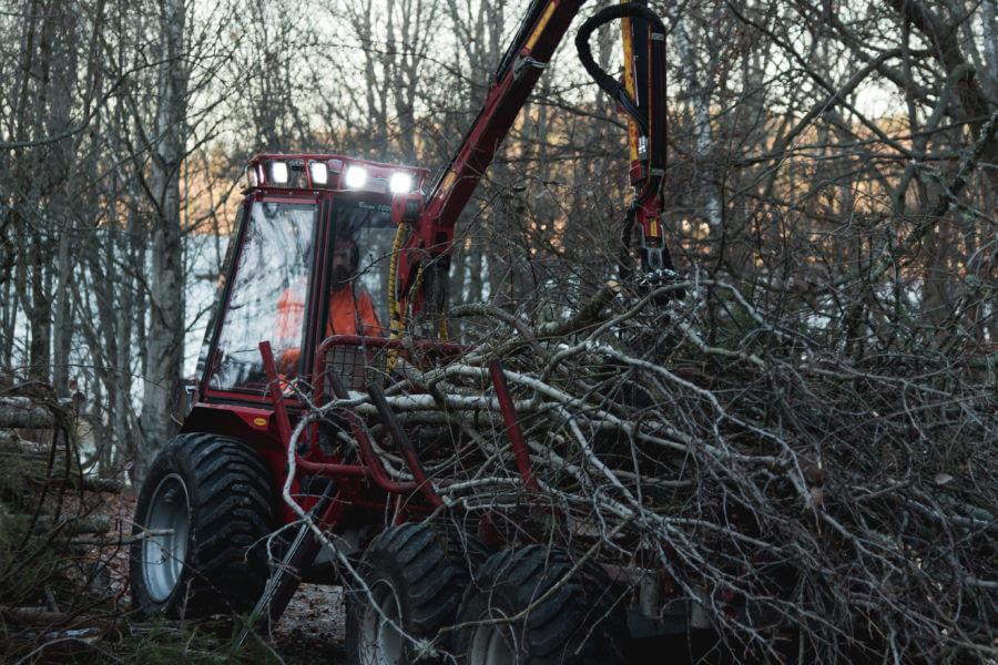 bortforsjling-jacksons-trädvård-bioenergi-träd